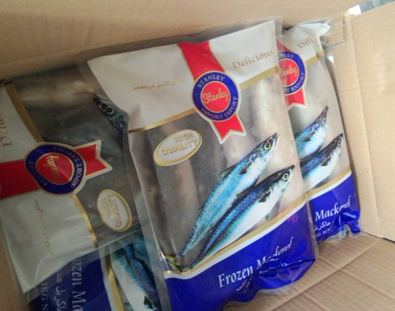 IQF 1kg/Poly bag pacific mackerel whole round
